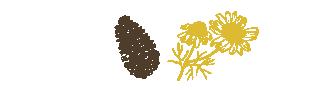 HC Concept - cocotte et fleurs